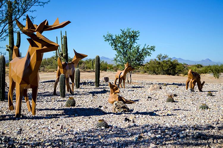 Deer at Tangerine Sky Park